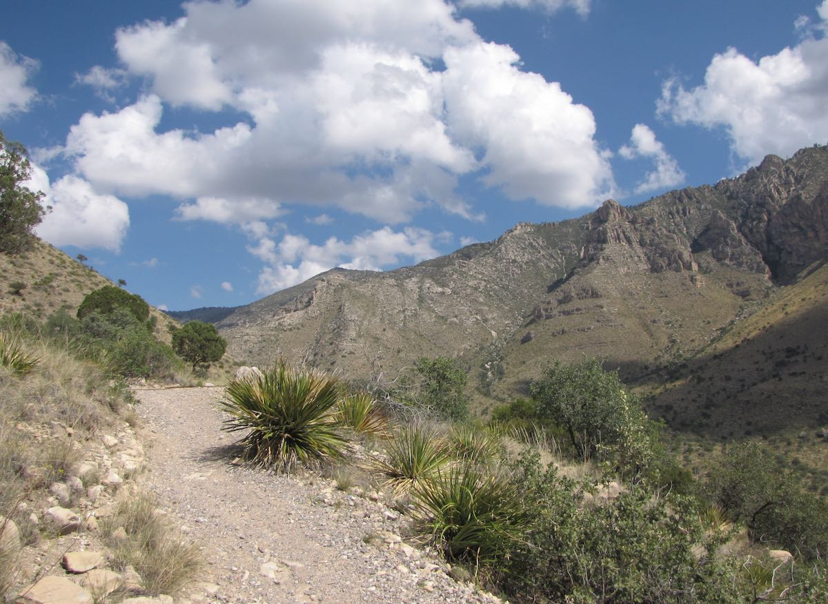 Guadalupe Peak Trail with mountains in the background